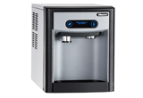 Ice dispenser and guest fridge